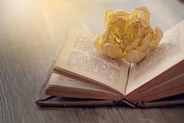 book-1356356__180